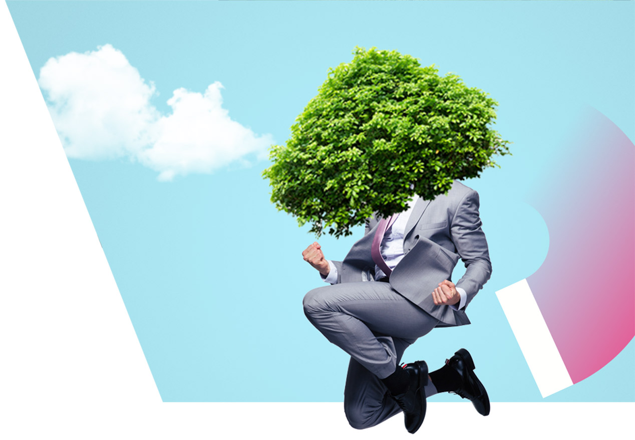 Grupo Enel Energías renovables